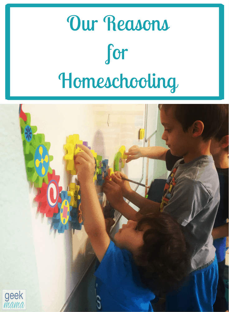 Our Reasons for Homeschooling